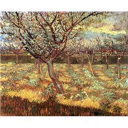 Van Gogh - Apricot Trees In Blossom 2