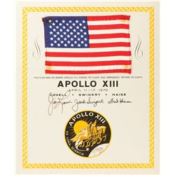 Apollo 13 Flown Flag
