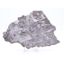 Campo del Cielo Iron Meteorite Slice