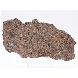 NWA 1227 Stone Meteorite Slice