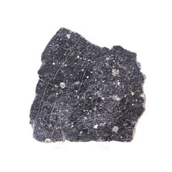 NWA 11788 Lunar Meteorite Slice