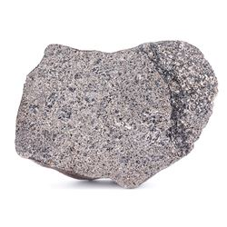 NWA 11081 Eucrite Meteorite End Cut
