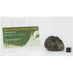 NWA 5480 Olivine Diogenite Meteorite End Cut