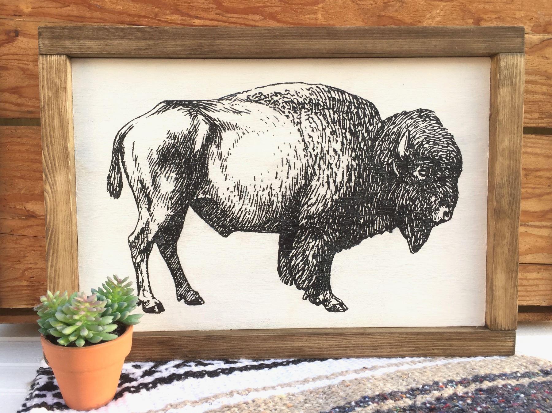 Buffalo Picture