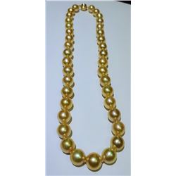 Absolutely Gorgeous Strand of Natural Golden  South Sea Pearls averaging 10.00 MM -13.00 MM  in diam