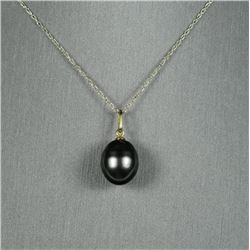 Gorgeous Natural Black Tahitian Pearl Pendant  measuring approx. 13.00 MM x 12.00 MM in  diameter se