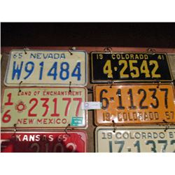 10 Assorted USA License Plates