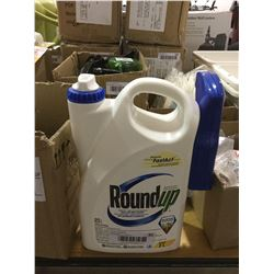 RoundUp Grass and Weed Control 2L