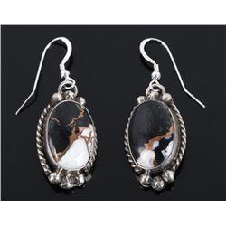 Navajo White Buffalo, Copper & Sterling Earrings