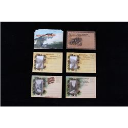 Six Vintage Colorado & Tennessee Postcards Set