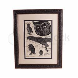 Harry Potter & The Chamber of Secrets Framed Owl Poster