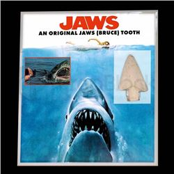 Jaws Original Tooth Display