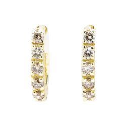 0.85 ctw Diamond Earrings - 14KT Yellow Gold