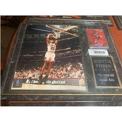 Mounted Plaque with card of Scottie Pippen