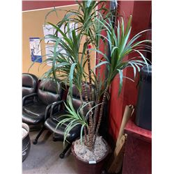 Artificual Palm Tree 5 foot