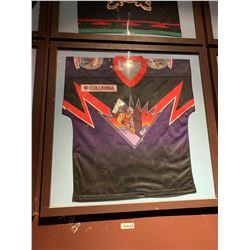 Large Framed Jersey - NAHL