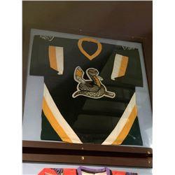 Large Framed Jersey - WPHL