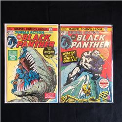 The BLACK PANTHER #14/ #13 (MARVEL COMICS)