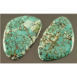 Lot of 2 Turquoise Stones