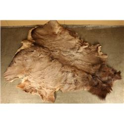 Rare Elk Hide Painting