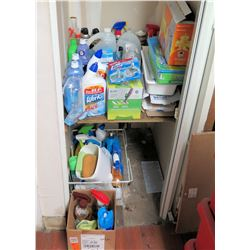 Contents of Cabinet: Cleaning Supplies, Iron, Hangers, Vacuum, Mops, etc