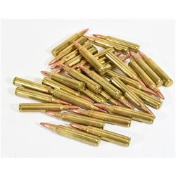 31 Rounds 300 Remington Ultra Magnum
