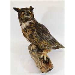 Great Horned Owl Mount
