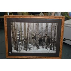 Framed Steven Lyman print of a moose in the woods