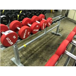 STEEL DUMBELL RACK, 10 SLOTS
