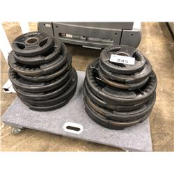 2 STACKS OF ASSORTED PLATE WEIGHTS