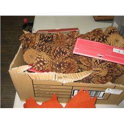 BOX OF SCENTED PINE CONES