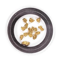 Lot of Gold Nuggets 2.73 grams Total Weight