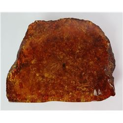 Large Chunk of Ancient Amber w/ Bee & Moss 1958g