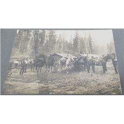 RR Buchanan Lolo Montana Pack Horse Train Photo
