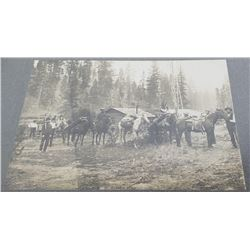 RR Buchanan Lolo Montana Pack Horse Train Photo