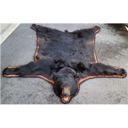 Very Large Montana Taxidermy Black Bear Rug