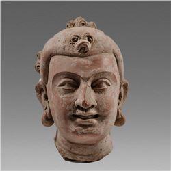 Gandhara Style Pottery Head Of Buddha.