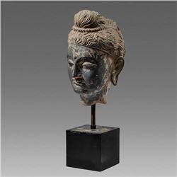 Gandhara Style Schist Stone Head Of Buddha.