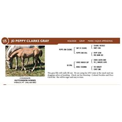 JD Peppy Clarks Gray