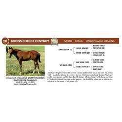 Boons Choice Cowboy