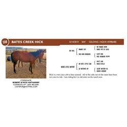 Bates Creek Hick
