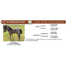 CC Starlights Doc