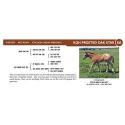 KQH Frosted Oak Star