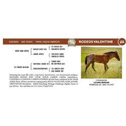 Rodeos Valentine