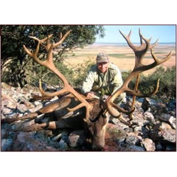 Iberian Red Stag Hunt in Spain with Giuseppe Carrizosa