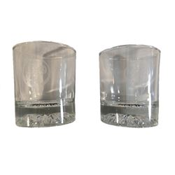 Michael Jackson Neverland Ranch Drinking Glasses