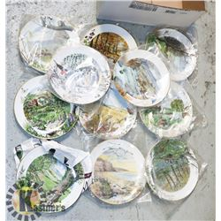 LOT OF 10 ASSORTED COLLECTOR PLATES BY PETER