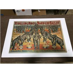 Ringling Brothers Barnum & Bailey Circus Poster