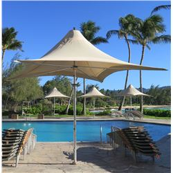 """Large Tuuci Collapsible 4-Spoke Umbrella 161"""" Tall, Approx. 216"""" Across Tall (includes crank to open"""