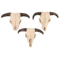 Tremors (3) miniature steer skull props.
